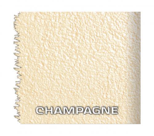 12 champagne